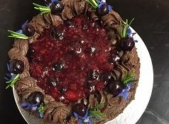 Vegan Chocolate and berry cake